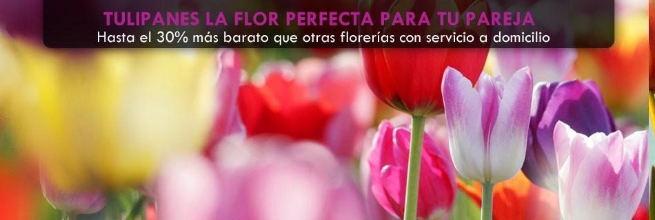 floristerias san salvador santa tecla (1)