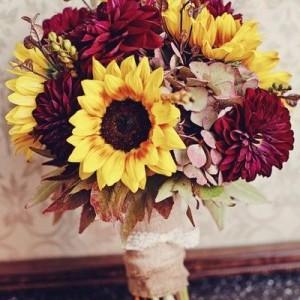 girasoles flores santa tecla san salvador