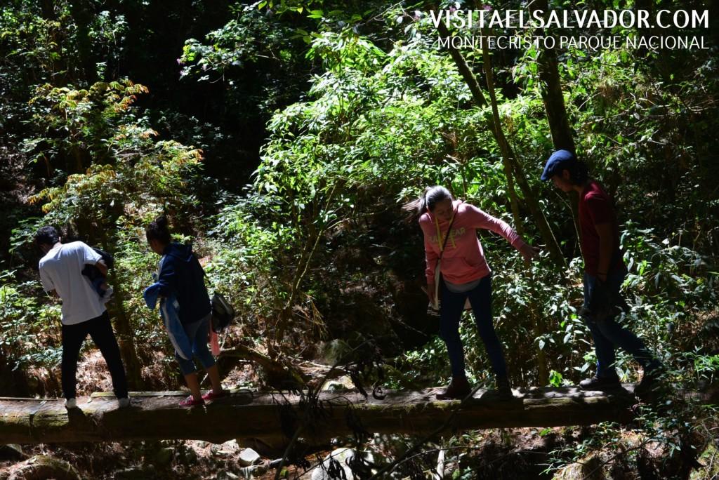 parque nacional montecristo el salvador